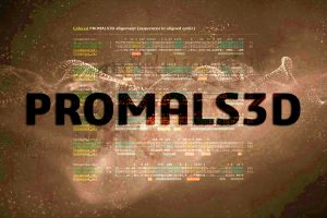 PROMALS3D | Image by bioinfo.com.br