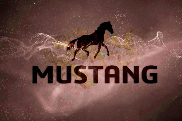 MUSTANG BIOINFORMATICS TOOL | Image by bioinfo.com.br